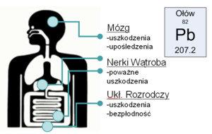 Źródło: www.tylkowoda.pl